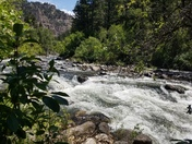 Bighorn National Forest / Leigh Creek Campground