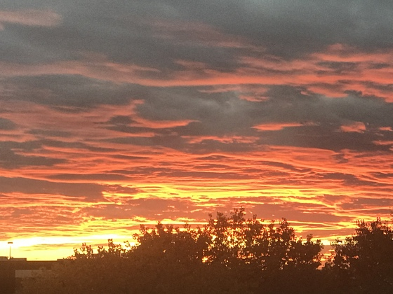 Fall sunset in NM