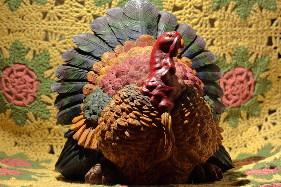 What A Turkey