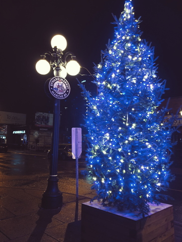Signs of Christmas in the Byward Market Ottawa, ON