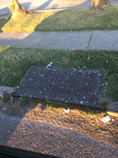 Storm Drain reality; in City of New Orleans !