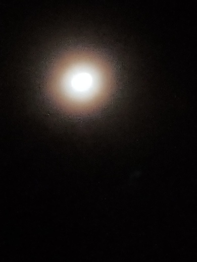 22 degree halo around the moon