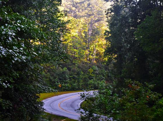 Sumter National Forest, SC