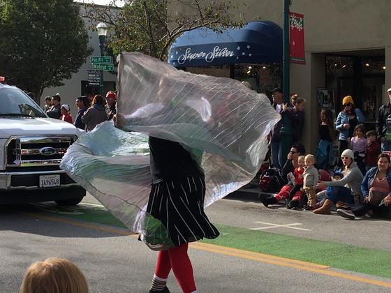 Santa Cruz Christmas Parade 2