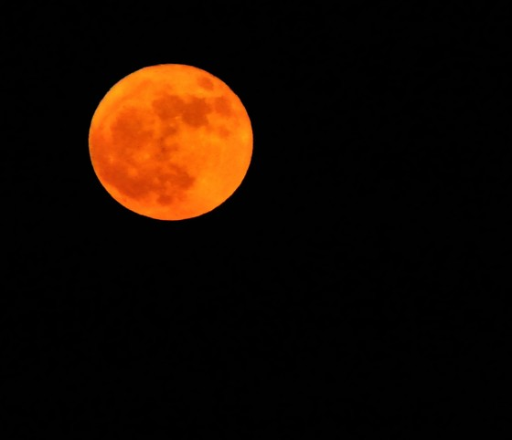 "SUPERMOON ~ ""Full Cold Moon"""