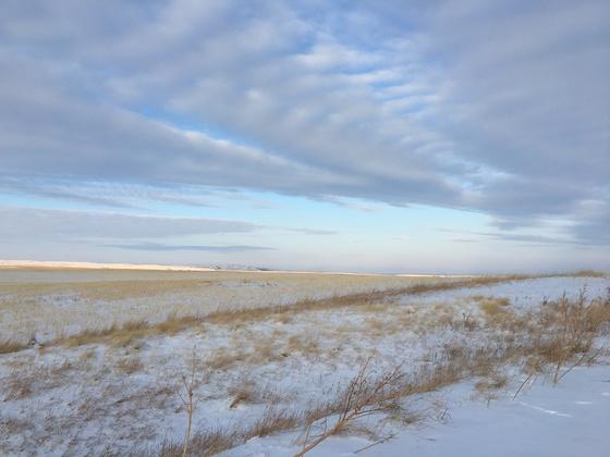 Prairie Winter Blue