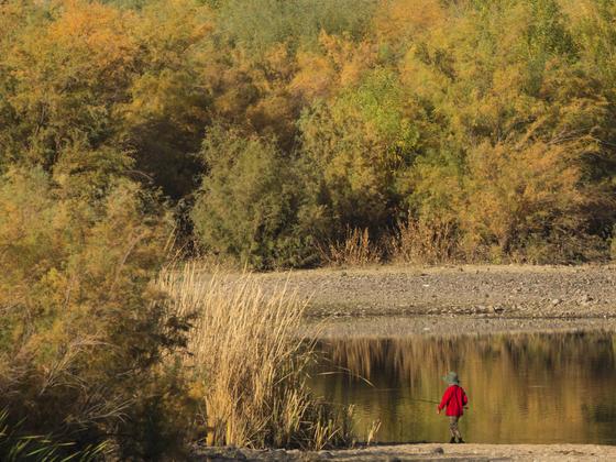 Lower Salt River Recreation Area