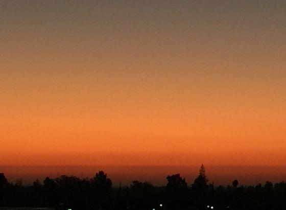 Evening shades
