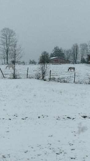 Snow in Pickens County, SC