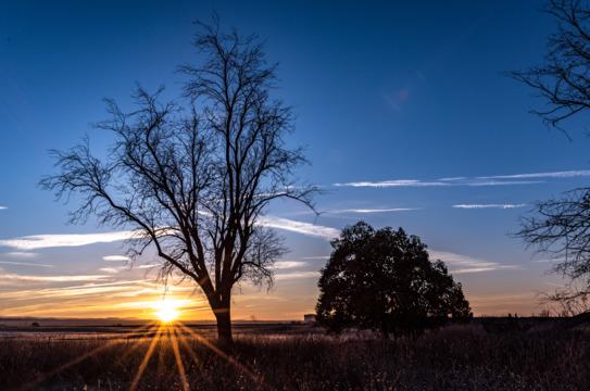 Sunrise in Lincoln