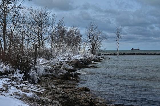 Harbour Bound