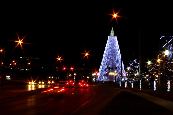 Stinson Park Holiday Lights