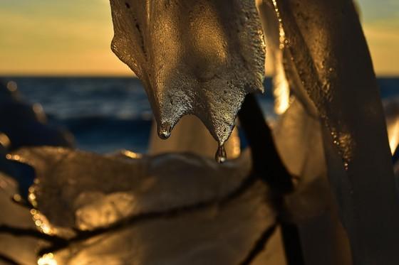 Golden Ice