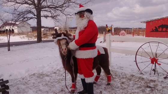 Santa and miniature horse CeCe