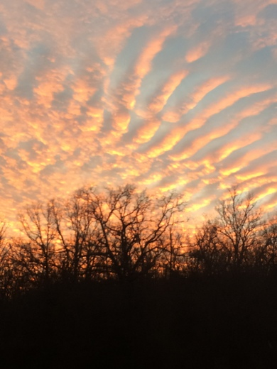 Beautiful Sunset in Fayetteville Arkansas today.