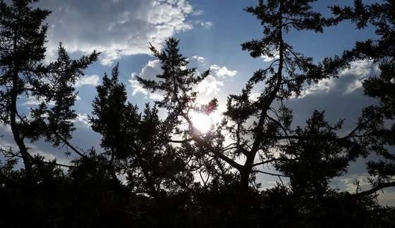 Albuquerque foothills