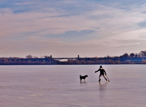Boy skating in Cootes Paradise with his dog, holding hockey stick in hand.