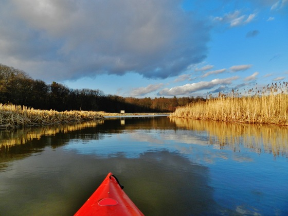Kayaking in Cootes Paradise, just down the hill from the City.