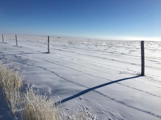 Snow at 30 Below