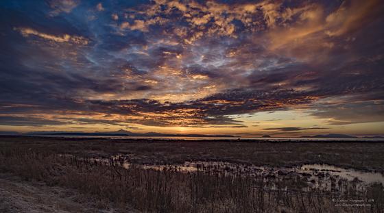 Sunrise over Boundary Bay BC