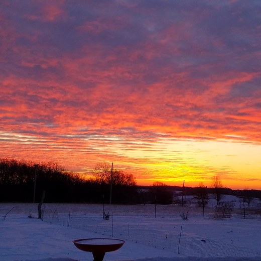Frigid sunset in Chariton this morning.