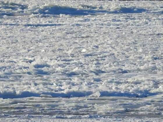 Frozen Susquehanna