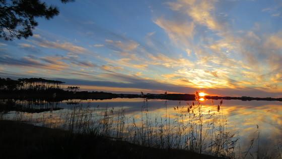 Western Lake - Grayton Beach State Park