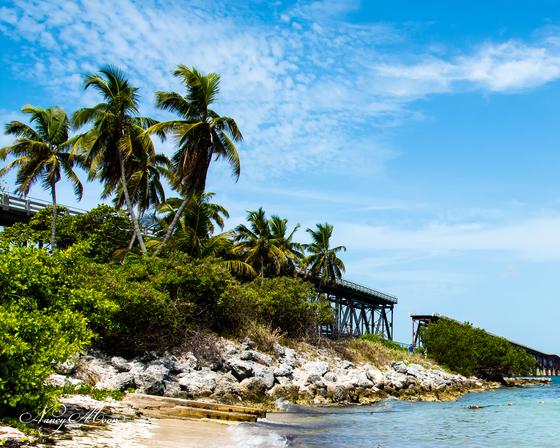 Bahia Honda View