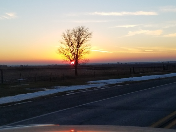 Southwest Iowa beautiful day for January!