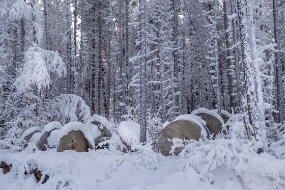 Winter in Watson Lake