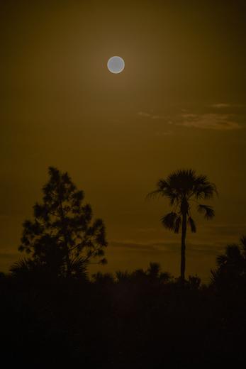 December Super Moon