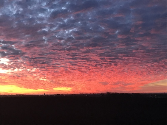 G.Sandoval's Front yards Castroville sunset Thursday Jan.11th