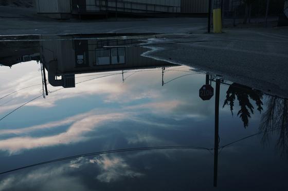 Rain Puddle Reflection