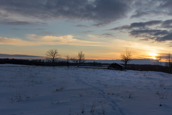 Sunset at the Homestead