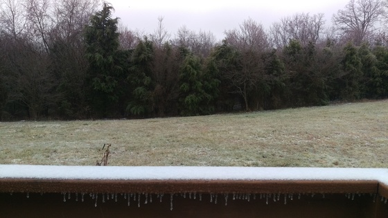 Ice in Meade County Ky in Guston.