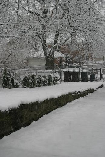 Snowfall in Amberley Village