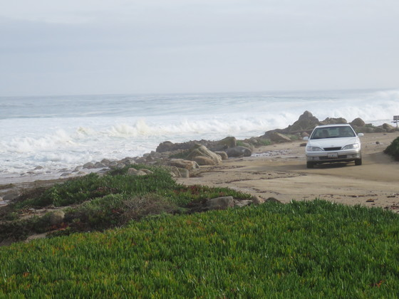 Waves in Pacific Grove