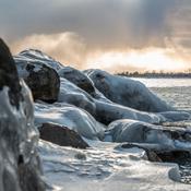 Frozen Toronto