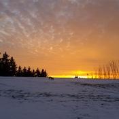 Newmarket sunset