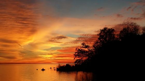 Lake maurepas sunset