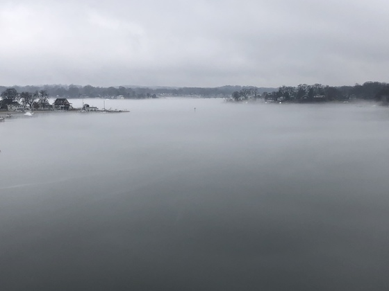 Foggy on the South River