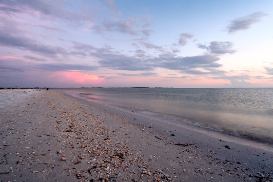Honeymoon Island Calm