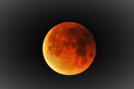 Super Blue Blood Moon from Weston Road
