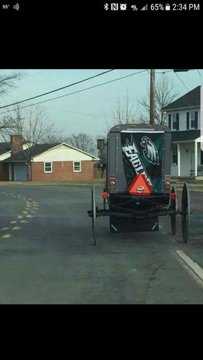 Amish Eagles pic