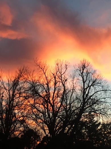 Sunset January 31