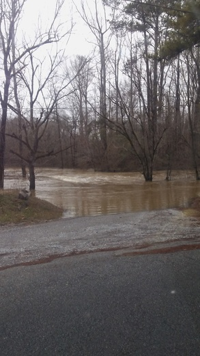 Heavy rainfall in Reeds Mill--Wellington today