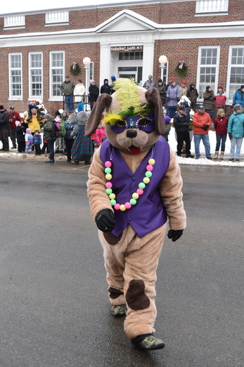 a luau wearing dog visiting kids along the parade route