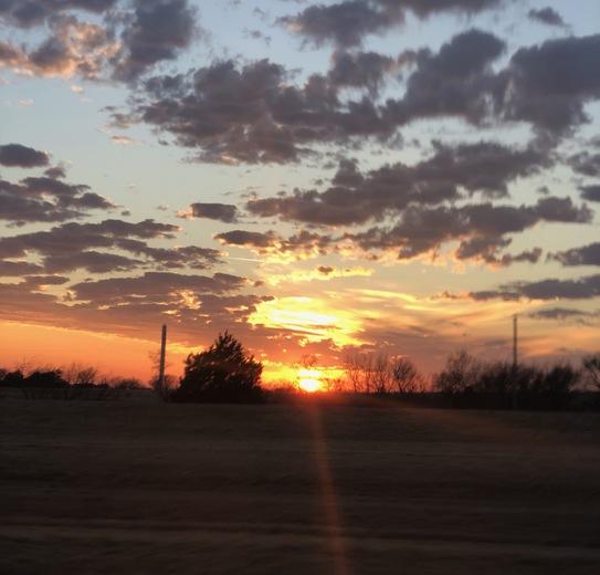 Oklahoma Beauty