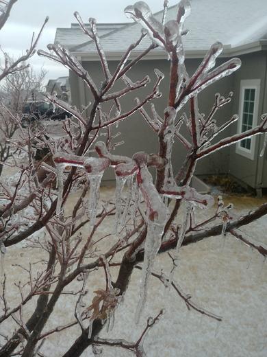 Ice in Smithville