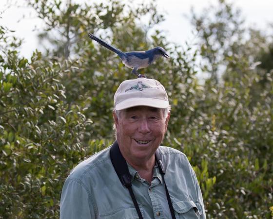 Florida Scrub Jay Conservation
